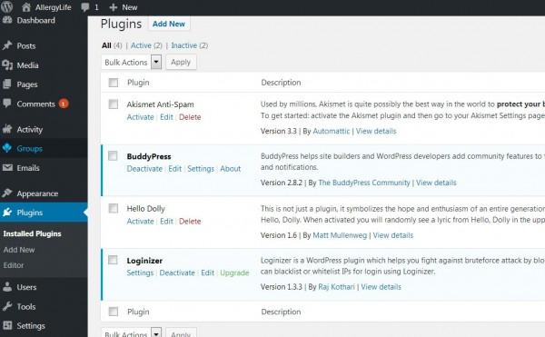active plugins.JPG