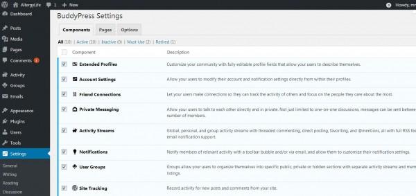 BuddyPress components.JPG