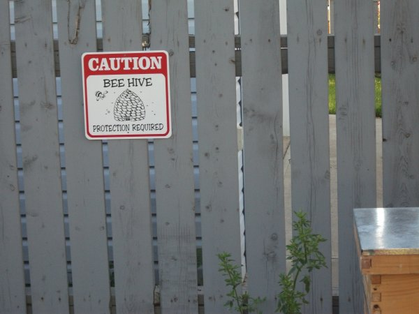 Caution Bee Hive