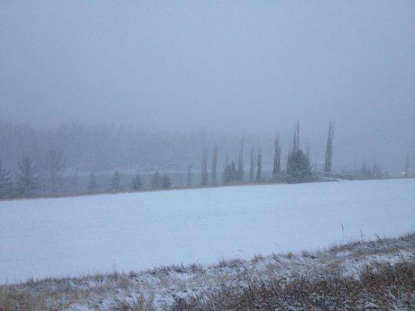 Snowy Morning in November