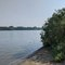 My Lentic Body - Pittock Lake